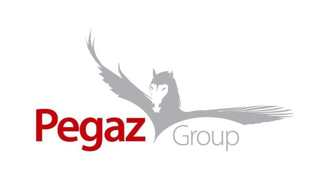 Pegaz group